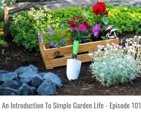 Simple Garden Life Intro – Episode 101