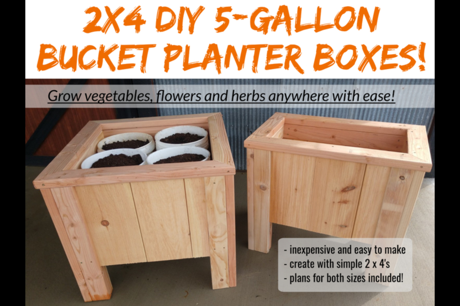 How To Grow Vegetables In Buckets