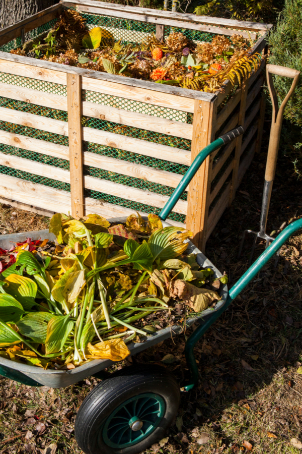 clear out your garden in the fall